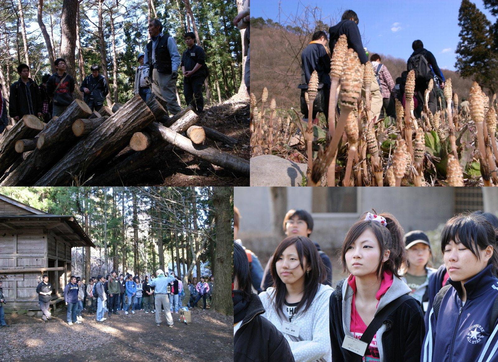 20090419gakugaiori_2