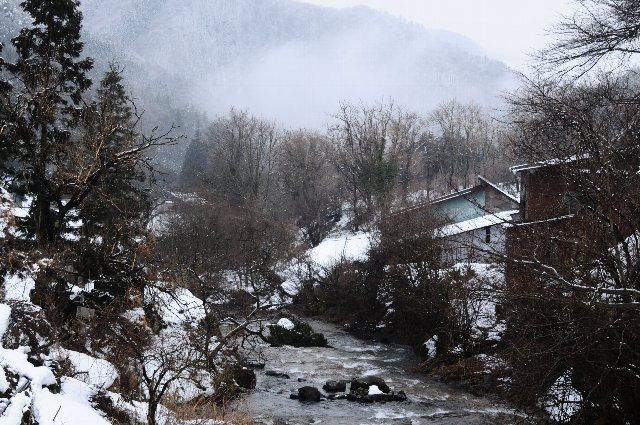20110303tokusa2